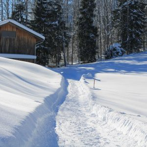 snowshoeing on super Morzine trail going into forest past a cabin